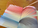 The Pop-Up Books